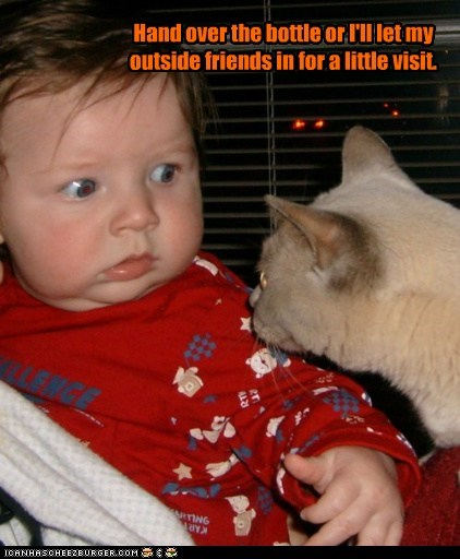 baby,bottle,caption,captioned,cat,Command,demand,friends,hand over,human,inside,outside,threat,ultimatum,visit