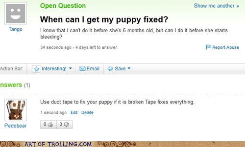duct tape,fixed,puppy,Yahoo Answer Fails