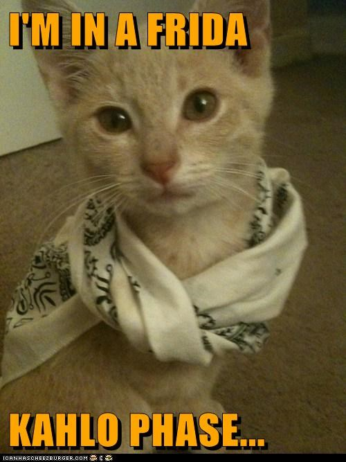 animals caption captioned cat frida kahlo I Can Has Cheezburger phase scarf