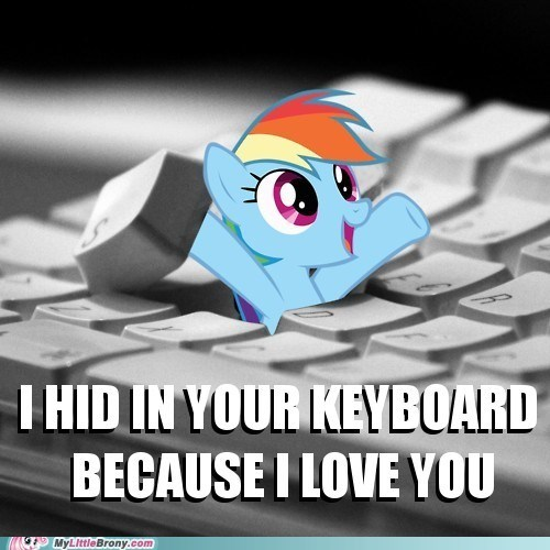 best of week IRL keyboard rainbow dash we love you too - 5683014656