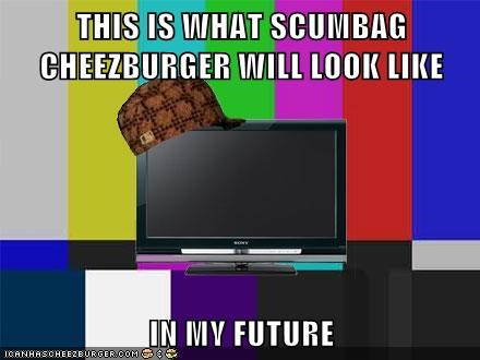 Cheezburger Image 5683442688