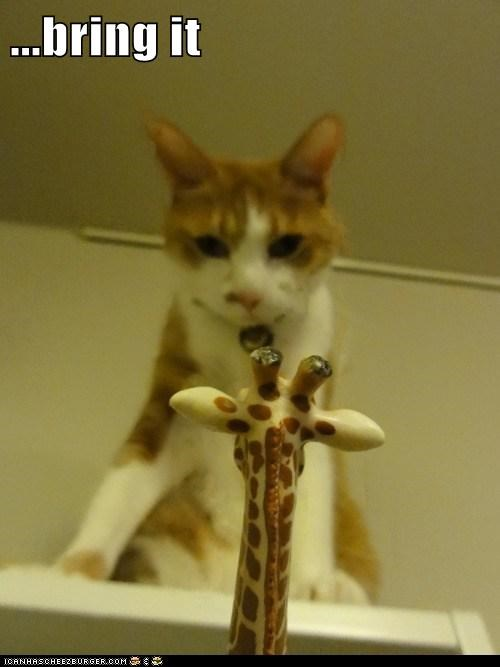 bluff,bring it,caption,captioned,cat,fight,figurine,giraffes,tabby,threat,toy