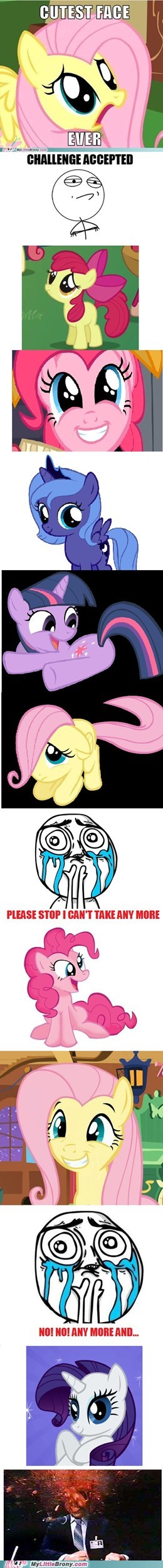best of week boom Challenge Accepted cuteness overload not anymore ponies - 5683876864