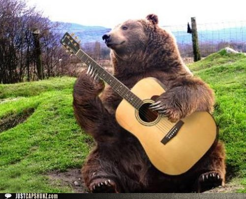 animals,bear,caption contest,folk music,folk singer,guitar,photoshopped