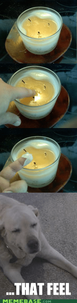 candles dat feel wax - 5684678656