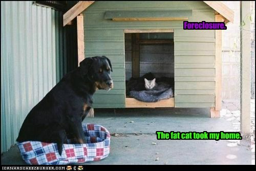 Foreclosure. The fat cat took my home.