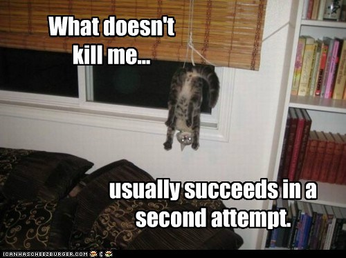 What doesn't kill me... usually succeeds in a second attempt.