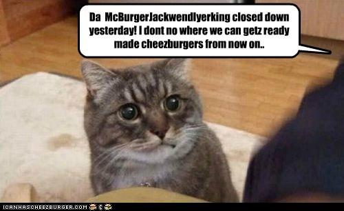 Cheezburger Image 5685198848