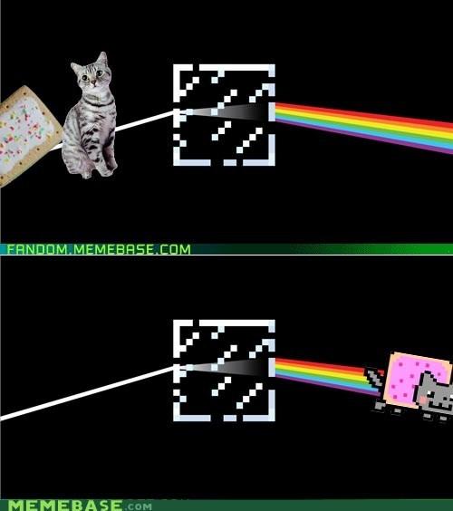 Dark Side of the Moon Nyan Cat pink floyd Reframe - 5685311744
