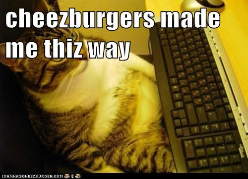 Cheezburger Image 5685685760