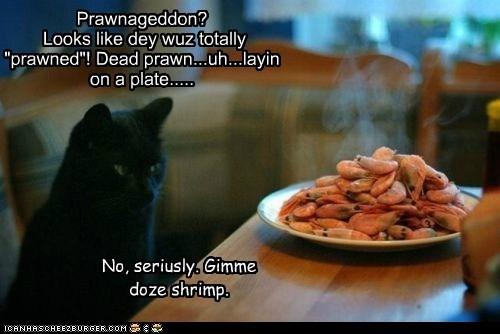 "Prawnageddon? Looks like dey wuz totally ""prawned""! Dead prawn...uh...layin on a plate..... No, seriusly. Gimme doze shrimp."