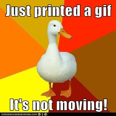 bird ducks dumb gifs moving paper printing Technologically Impaired Duck technology