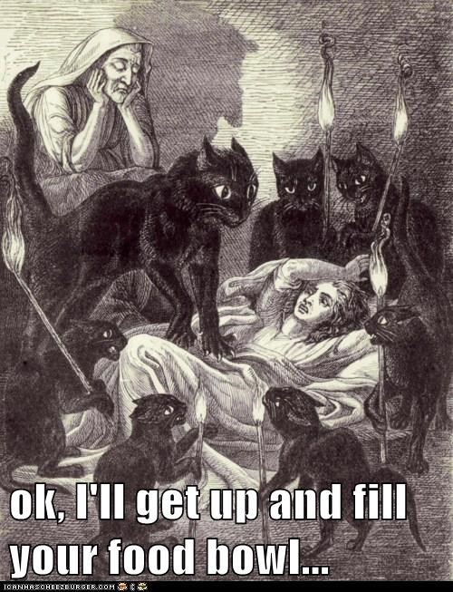animals,art,cat,funny,historic lols,illustration
