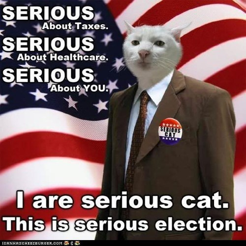 Ad campaign caption captioned cat election serious serious cat shoop slogan