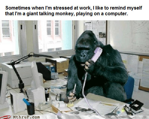 ape at the office back to basics gorilla phone g rated Hall of Fame M thru F monkey - 5688214272