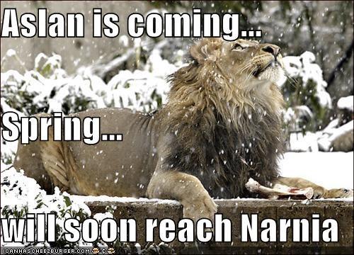 Aslan Is Coming Spring Will Soon Reach Narnia Cheezburger