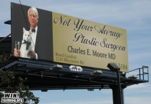 cat classy sir sign surgeon what