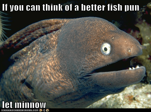 Bad Joke Eel,eels,fish,jokes,let me know,minnow,puns