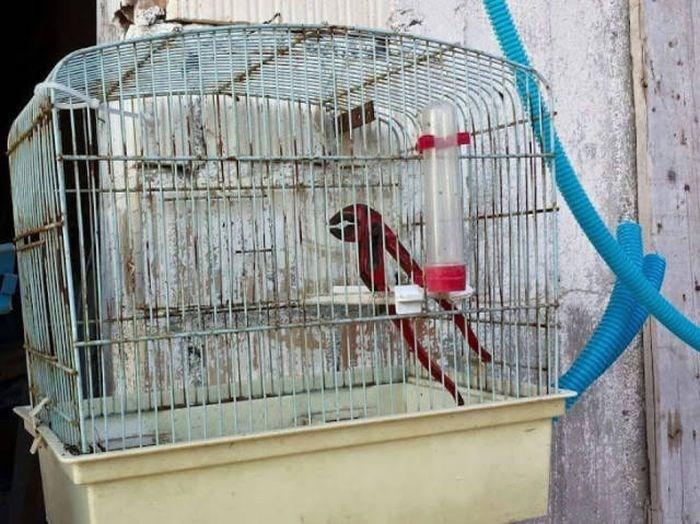 life photos interesting imagination - 5689349