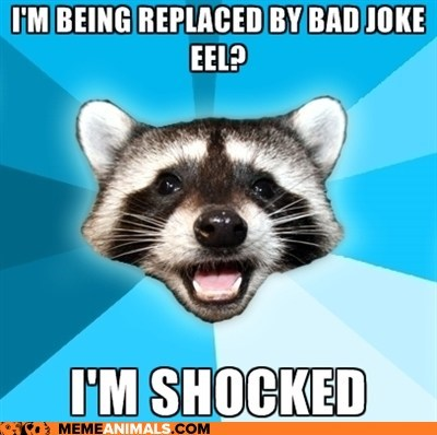 eels,jokes,lame,Lame Pun Coon,puns,raccoons,replaced,shocked,shocking