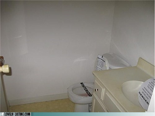 bathroom,mystery,toilet,winterized