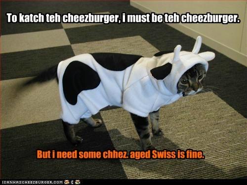 Cheezburger Image 5689993984