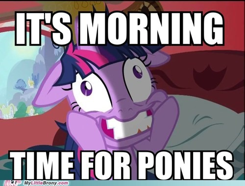 friends paranoid the internets time for ponies wake n make - 5690131968