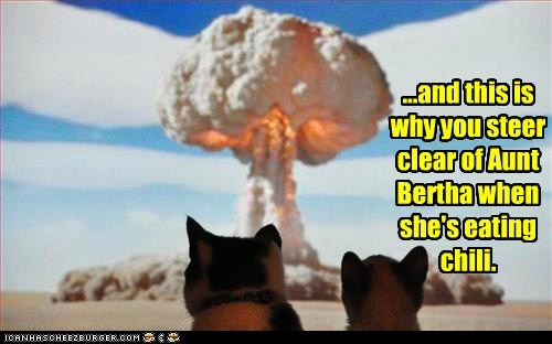 animals,cat,chili,explosion,fart,flatulence,gas,I Can Has Cheezburger,whoa