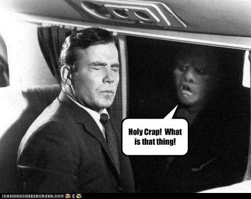 gremlin holy crap scary Shatnerday what is that William Shatner