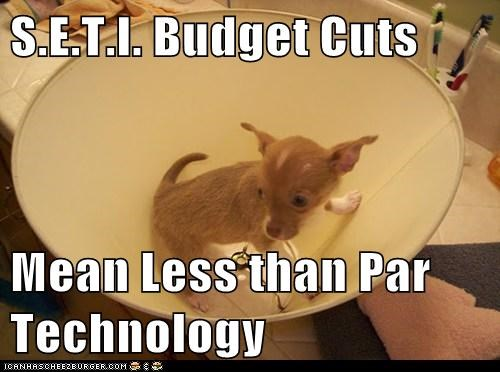 budget cuts,chihuahua,lamp,lamp shade,S.E.T.I,science,technology,Telescope