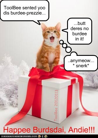 Happee Burdsdai, Andie!!! ToolBee sented yoo dis burdee-prezzie... ...butt deres no burdee in it! ..anymeow...* snerk* ToolBee 20120113