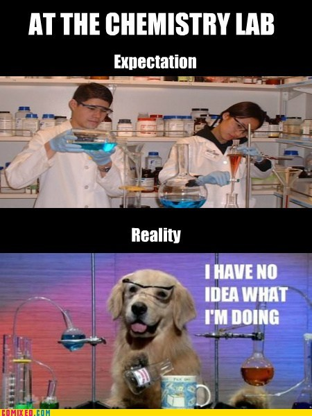 Chemistry expectation vs reality meme the internets whats going on