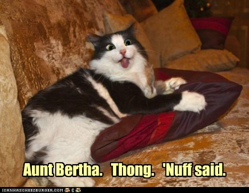 aunt bertha,cat,gross,I Can Has Cheezburger,no,please put clothes on,thong,tongue,tongue out,underwear,yuck