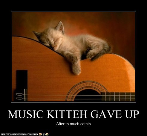 MUSIC KITTEH GAVE UP After to much catnip