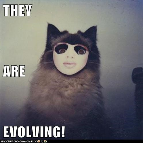 animals,cat,evolution,Evolve,evolving,I Can Has Cheezburger,mask,whoa