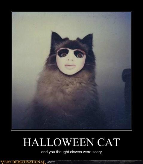 cat halloween hilarious scary - 5693030400