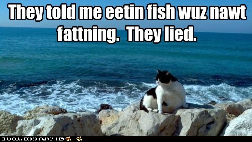 They told me eetin fish wuz nawt fattning. They lied.