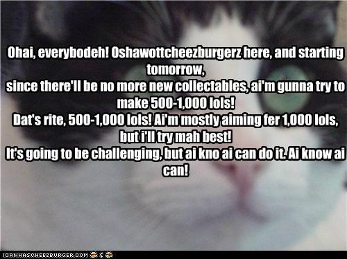 Cheezburger Image 5693665280
