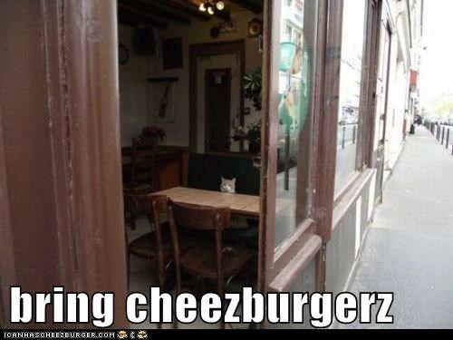 Cheezburger Image 5693715456