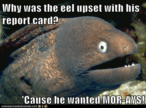 Bad Joke Eel,bad jokes,eels,grades,jokes,moray,puns,report card,school