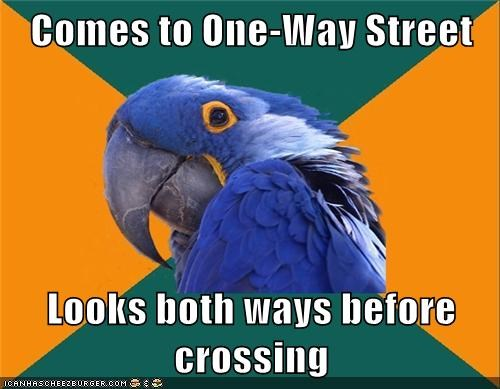 Comes to One-Way Street Looks both ways before crossing