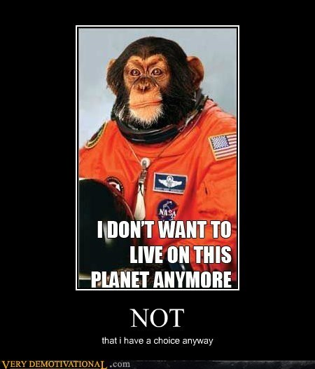 astronaut choice hilarious monkey space wtf - 5696825856
