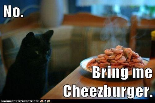 Cheezburger Image 5697014528