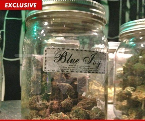 beyoncé Blue Ivy Jay Z Legalize It Marijuana dispensaries Pop-Culture Pot Strain
