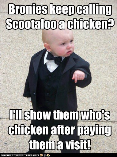 Bronies keep calling Scootaloo a chicken? I'll show them who's chicken after paying them a visit!