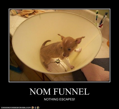 NOM FUNNEL NOTHING ESCAPES!
