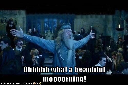 beautiful,drama,dumbledore,Harry Potter,Hogwarts,Michael Gambon,morning,oklahoma