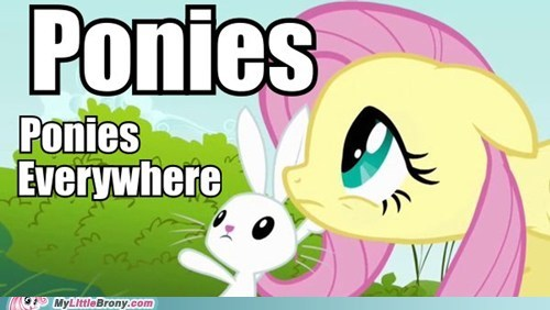 angel bunny ponies the internet - 5699764224
