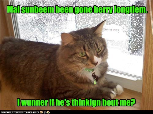 Mai sunbeem been gone berry longtiem. I wunner if he's thinkign bout me?