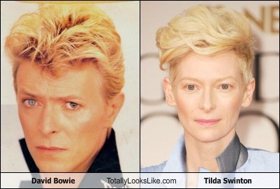 actor,david bowie,funny,Music,tilda swinton,TLL